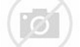 Ahmad Dhani: Pilot Garuda Kampret!