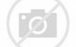 Javier Hernandez Chicharito Girlfriend
