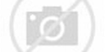 Download Tema Naruto Kyuubi Untuk Windows X P