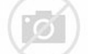 Cristiano Ronaldo-Irina Shayk Mesra saat Nonton Basket - parade3.jpg