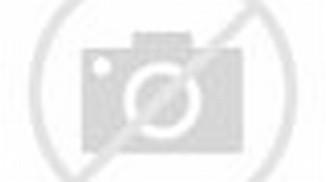Lihat Foto 'n Profil : D'Masiv Biography