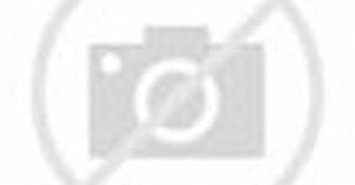BosMobil.com - Komunitas beranggotakan Toyota Kijang dari generasi ...