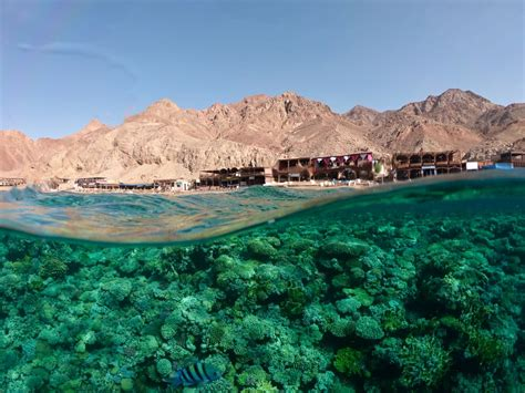 Dive Dahab, Egypt 2019 ProDive Travel