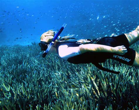 Popular dive & snorkel spots Tourism Western Australia