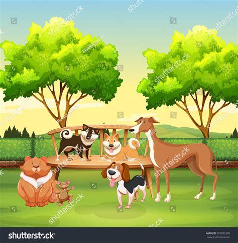 Different Kind Pet Park Illustration Stock Vector