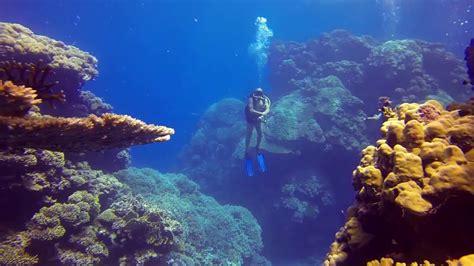 Scuba diving in Egypt YouTube