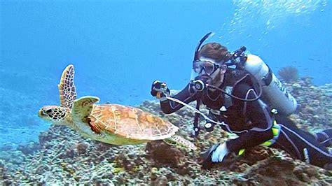 SCUBA DIVING DEEP SEA IN JAPAN YouTube