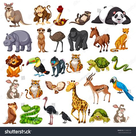 Different Types Wild Animals On White Stock Vector 512402101 Shutterstock