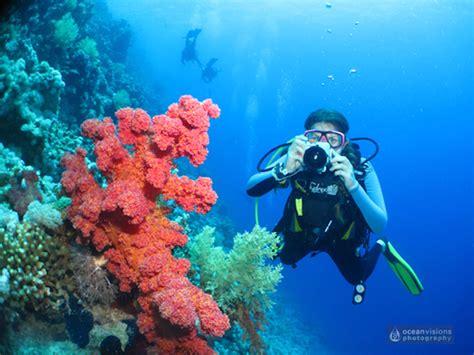 10 Starter tips to get the best underwater photos Scuba