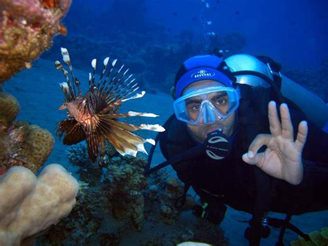 Red Sea Holidays, Red Sea Tours, Diving Tours in Red Sea Egypt