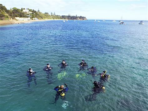 Scuba diving, Outdoor activities, Victoria, Australia