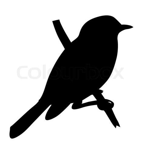 Vogel Silhouette auf weißem Hintergrund , Vektor