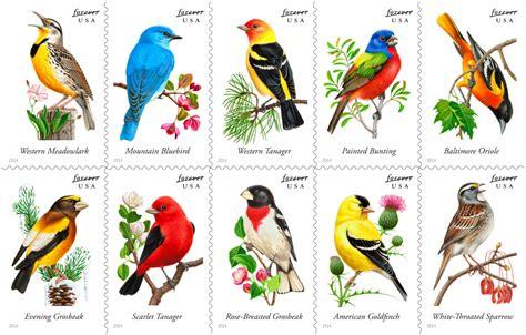 Song Birds virtualstampclubcom
