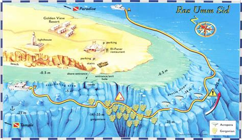 Dive Sites of the local coast in Sharm el Sheikh Red Sea