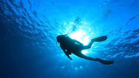 Scuba Diving Wallpaper (59 images)