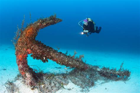 The top dive spots in Malta Dive Reviews & Reports
