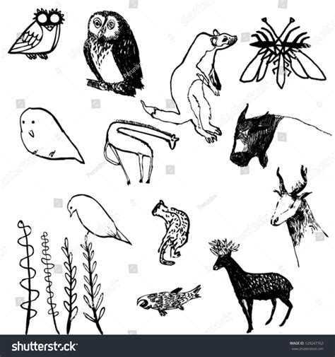Vector Illustration Different Kinds Animals Plants Stock