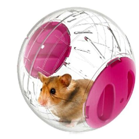 Pets Small Animals Run About Mini 47inch Exercise Balls