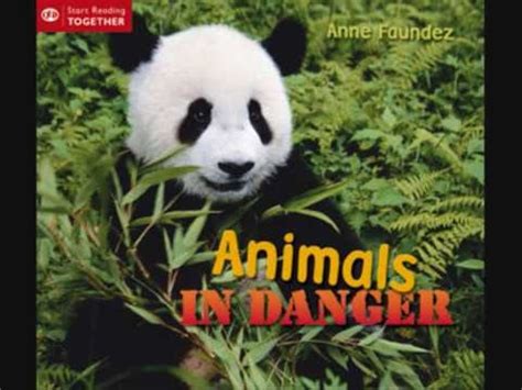 Animals in danger sad piano song YouTube