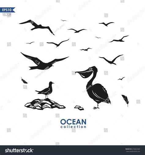 Set Different Sea Birds Seagull Pelican Stock Vector