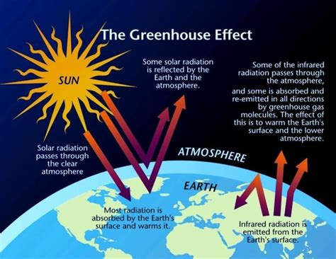 a look at the different factors fueling the greenhouse effect Greenhouse effect from water vapor is filtered out, showing the contributions of other greenhouse gases  the human fingerprint in temperature trends another human fingerprint can be found by looking at temperature trends in the different layers of the atmosphere.