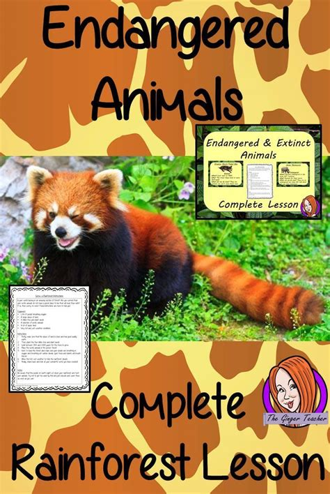 Best 20 Endangered animals lessons ideas on Pinterest