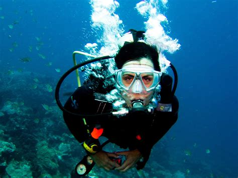 Commercial Versus SCUBA: Diving Essentials Divers