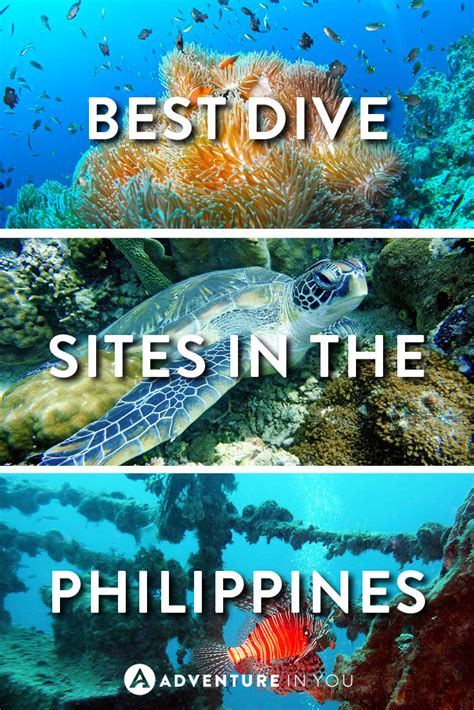 Philippines Diving: Best Dive Sites You Need to Visit