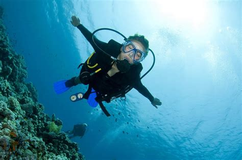DIVEin Scuba Diving & Snorkeling Free Magazine for
