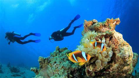 Scuba Diving in the Mediterranean Dive Reviews & Reports