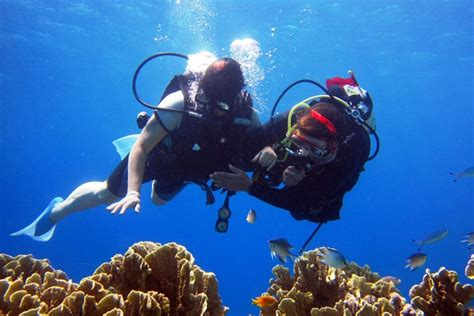 Top 5 Scuba Diving Places in India Weekend Thrill