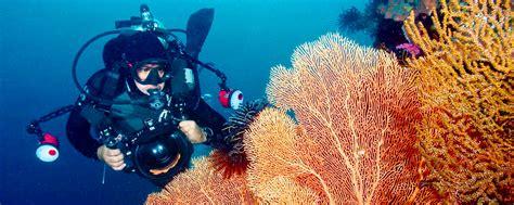 Underwater Photography :: Cebu Fun Divers