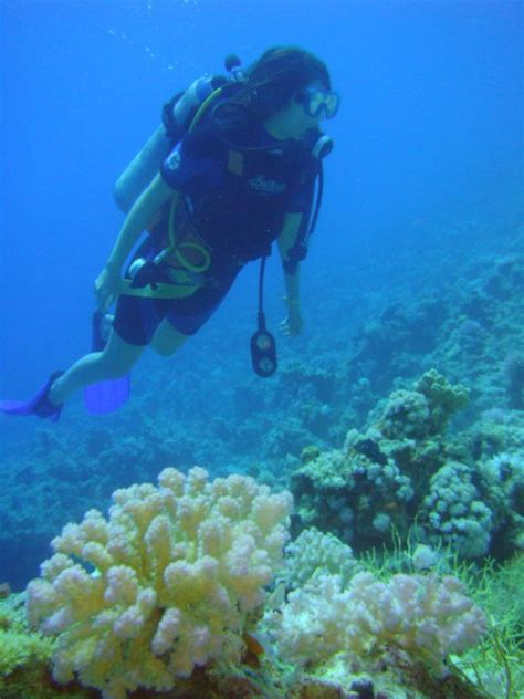 Picture of the Week, Diving Adventure in Egypt AquaNerd