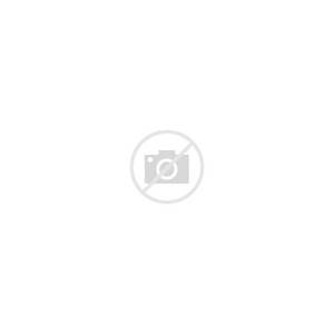 Best One Page Resume Examples