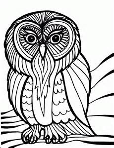 Bird Coloring Pages | Coloring Ville