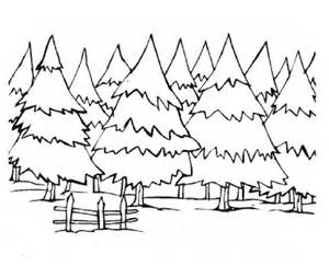 Pine Trees Coloring Pages | Coloring