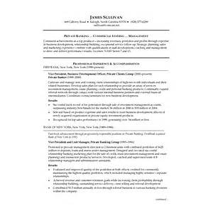 Sample Banking Resume Examples