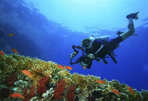 Scuba and Snorkelling Safety in Egypt