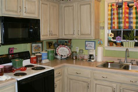 Painting Ideas Kitchen Cabinets Cabinets Matttroy