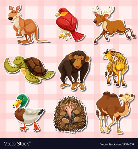 types of animals Kenicandlecomfortzonecom