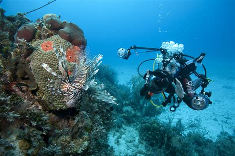 6 Questions to Ask Before Taking Up Underwater Photography