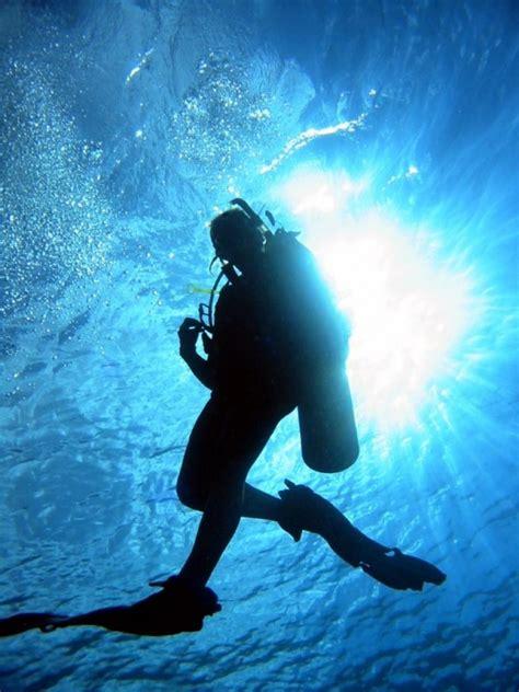 Reaper List Activity Sections Scuba Diving