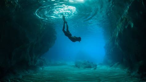 Scuba diving wallpapers and images wallpapers, pictures