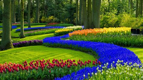 17 Beautiful Garden Wallpapers for Desktop DotCave