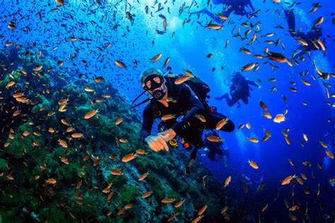 Diving in Koh Samui, Thailand Dive The World Vacations