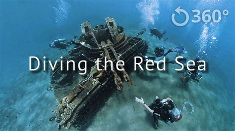 Diving the Red Sea 360° 360 Labs Mettle