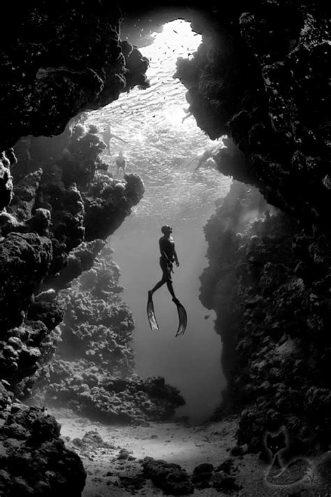 The ocean world in black & white (40 photos) CLICK HERE