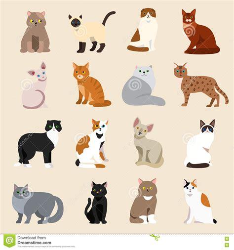 Cat Breeds Cute Pet Animal Set Stock Vector Image: 76488039