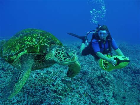 22 Best Scuba Diving Destinations in the World FREEYORK