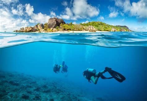 Photo Underwater world Underwater diving Nature Island
